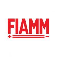 FIAMM.jpg